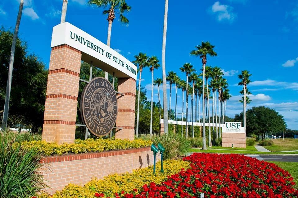 منح جامعة جنوب فلوريدا لدراسة البكالوريوس في الولايات المتحدة الأمريكية2021